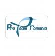 Pro Team Romania